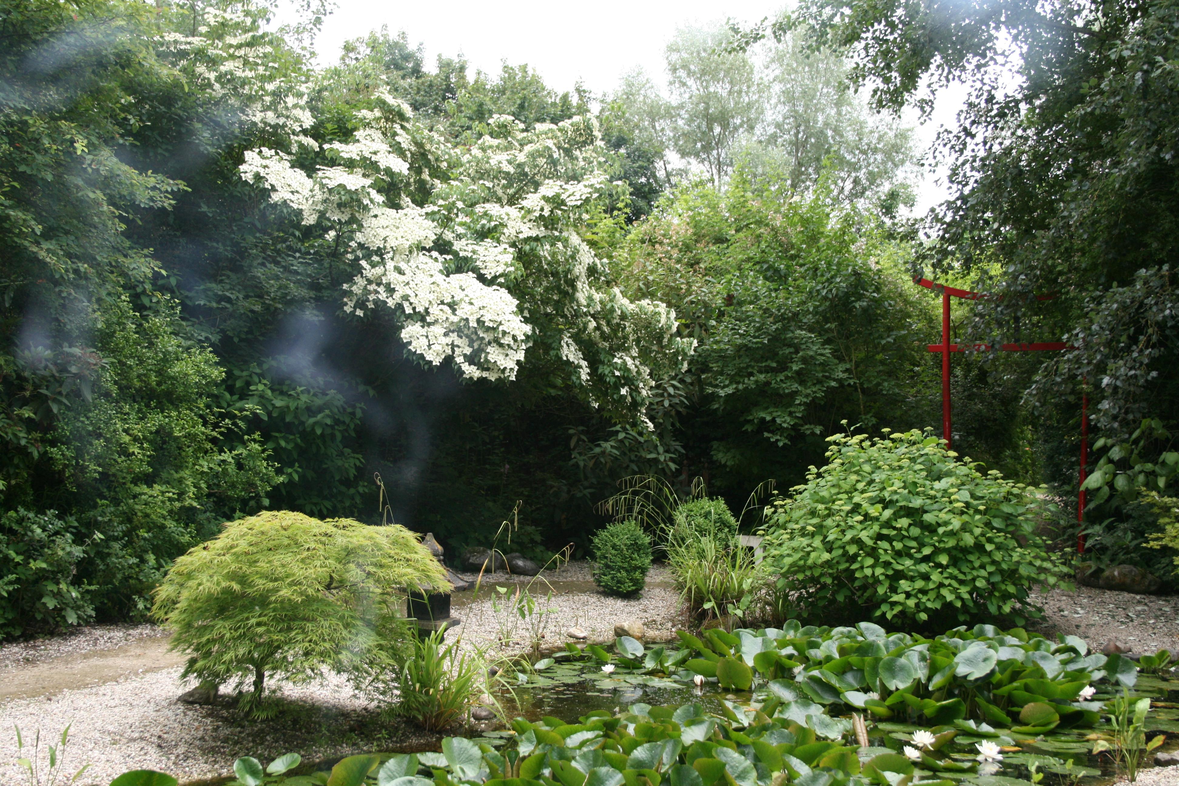 Tuinen Van Honschoten.Wandeling De Levenstuinen Van Het Groot Hontschotende
